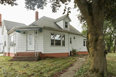 Bridgman Single Family Home For Sale: 4148 Lake St
