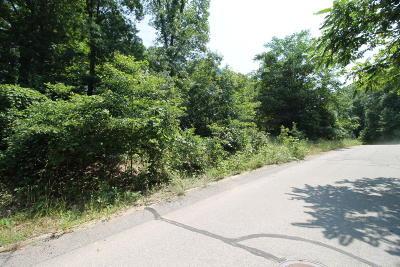 Bridgman Residential Lots & Land For Sale: 9419 Kramar Drive