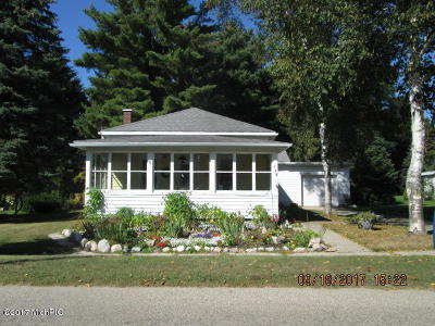 Pentwater Single Family Home For Sale: 114 E Park Street