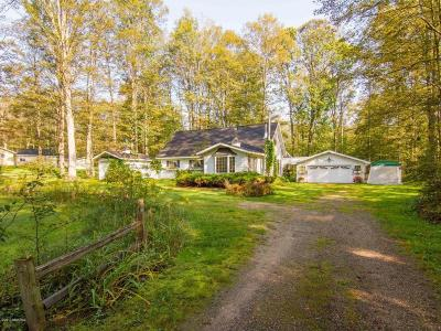 Manistee County Single Family Home For Sale: 23730 Cadillac Highway