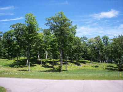 Manistee County Residential Lots & Land For Sale: Lot 8 Ceylon Drive