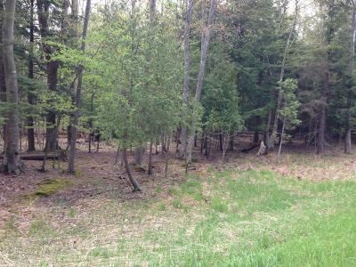 Manistee County Residential Lots & Land For Sale: Lots 2&3 Portage Point Dr 25&26