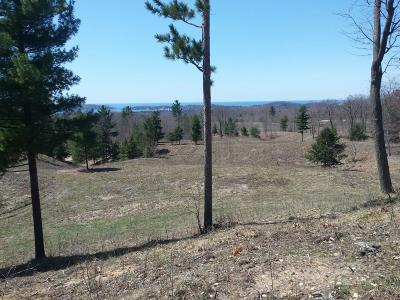 Manistee County Residential Lots & Land For Sale: Eagle Ridge Circle