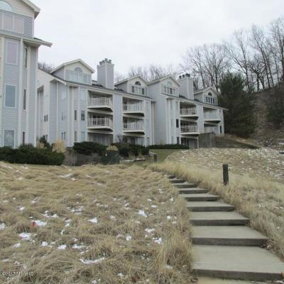 Grand Haven, Ferrysburg, Spring Lake Condo/Townhouse For Sale: 810 S Harbor Drive #18