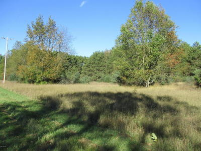 Scottville Residential Lots & Land For Sale: 262 S Quarterline Road #Parcel '