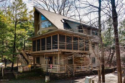 Covert MI Single Family Home For Sale: $474,900