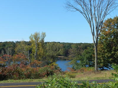 Oceana County Residential Lots & Land For Sale: V/L N 72nd Avenue