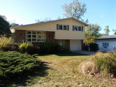 Newaygo County Single Family Home For Sale: 4345 Chippewa Trail