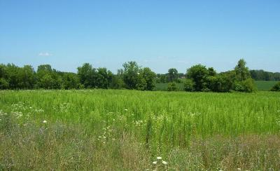 Newaygo County Residential Lots & Land For Sale: Marsh Way