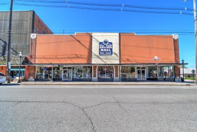Berrien County Commercial For Sale: 218 N 2nd