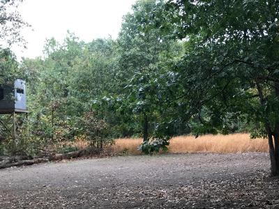 Oceana County Residential Lots & Land For Sale: 00 128th Street