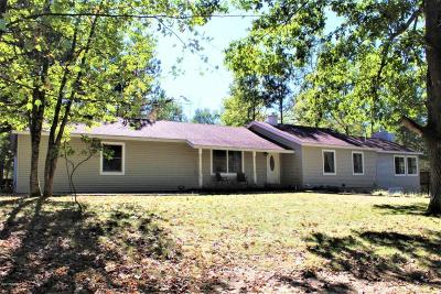 Irons Single Family Home For Sale: 9673 N Kings Point