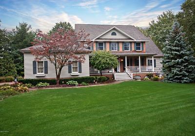 Stevensville Single Family Home For Sale: 2849 Blue Ridge Path