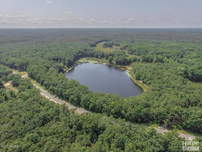 Oceana County Residential Lots & Land For Sale: 116th Avenue
