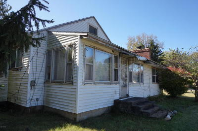 South Haven Single Family Home For Sale: 68977 M-43