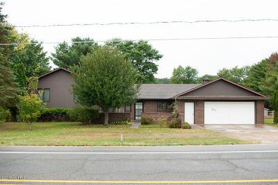 Newaygo MI Single Family Home For Sale: $189,000