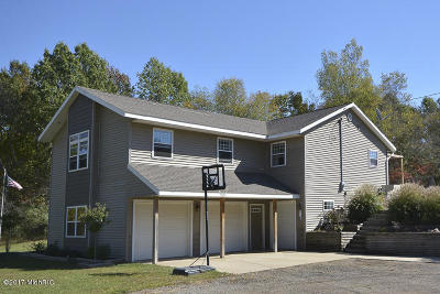 Gobles Single Family Home For Sale: 29535 22nd