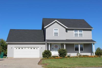 Edwardsburg Single Family Home For Sale: 20918 State Line Road