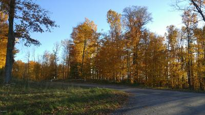 Mecosta County Residential Lots & Land For Sale: 13 Rolling Hills Lane