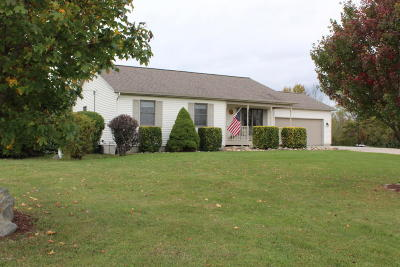 Allegan County Single Family Home For Sale: 2456 63rd Street