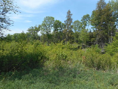 Manistee County Residential Lots & Land For Sale: 8494 Anderson Road