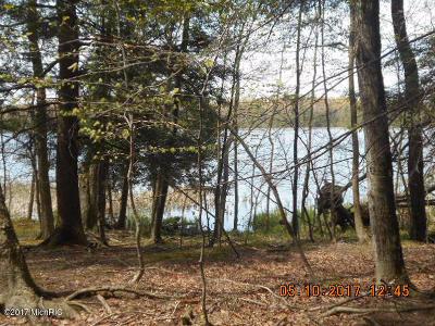 Ludington Residential Lots & Land For Sale: Hamlin Shoals #15