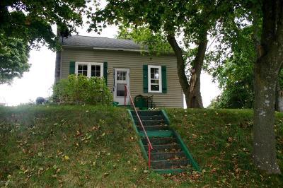 Ludington Single Family Home For Sale: 406 E Stray
