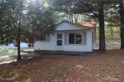 Mecosta County Single Family Home For Sale: 9551 W School Section Lake Drive
