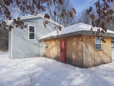 Newaygo County Single Family Home For Sale: 535 Pettibone