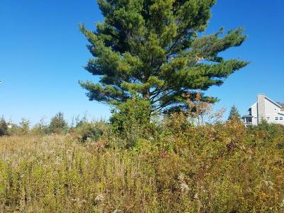 Allegan County Residential Lots & Land For Sale: 24 Lakeview Avenue