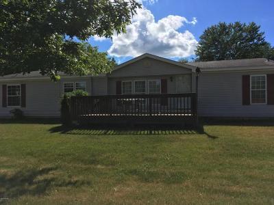 Ada Single Family Home For Sale: 6347 Knapp Street NE