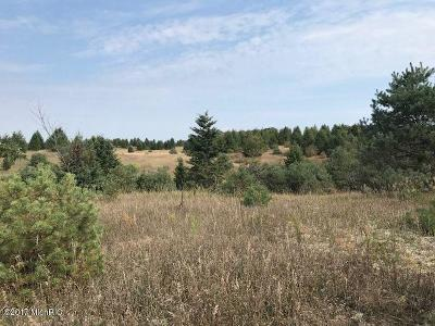 Manistee County Residential Lots & Land For Sale: 0000 9 Mile Road