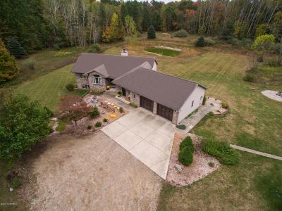 Rockford Single Family Home For Sale: 8866 Whittall Street NE