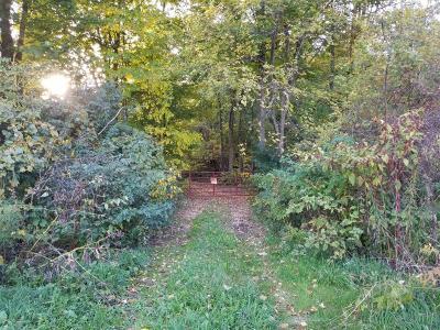 Buchanan Residential Lots & Land For Sale: N Hidden Valley Trail N
