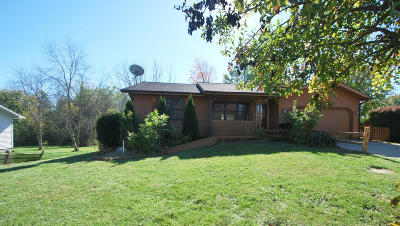 Fennville Single Family Home For Sale: 5660 Landsburg Road