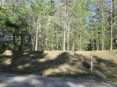 Oceana County Residential Lots & Land For Sale: Ottawa