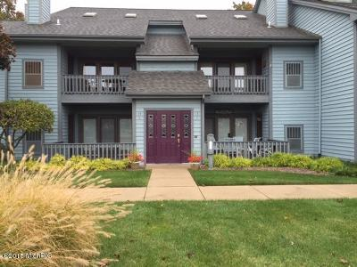 South Haven Condo/Townhouse For Sale: 210 N Shore Drive #3