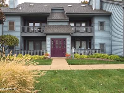 Van Buren County Condo/Townhouse For Sale: 210 N Shore Drive #3