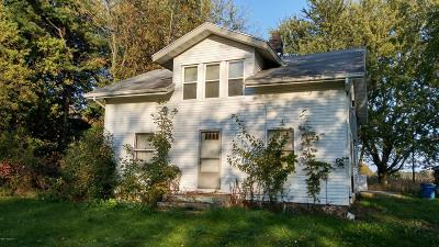 Niles Single Family Home For Sale: 3205 Portage Road