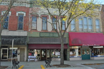 Commercial For Sale: 113 Locust Street