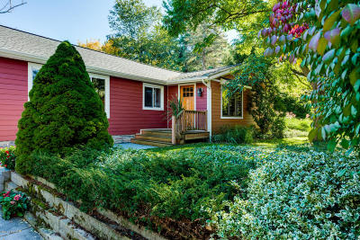 Saugatuck, Douglas Single Family Home For Sale: 159 Takken Street
