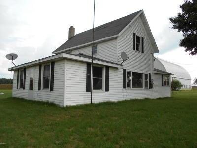 Newaygo County Single Family Home For Sale: 1477 E 14 Mile
