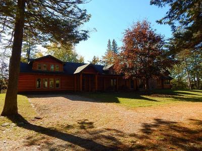 Hillman MI Single Family Home For Sale: $429,900