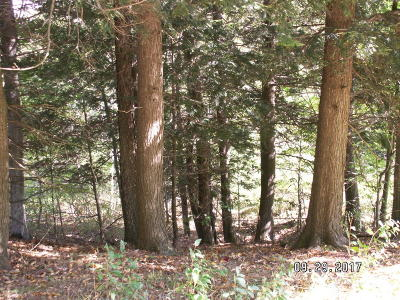 Manistee County Residential Lots & Land For Sale: Portage Ridge - North Star Lane #3