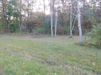 Newaygo County Residential Lots & Land For Sale: C-2a Annie Lane