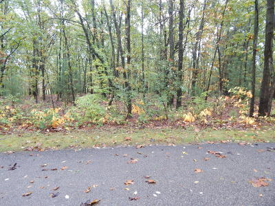 Newaygo County Residential Lots & Land For Sale: C-4 Annie Lane