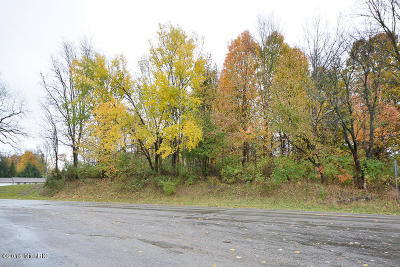 Kalamazoo County Residential Lots & Land For Sale: Douglas Avenue