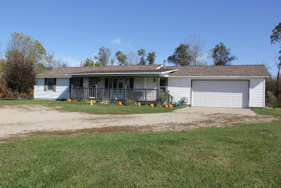Mecosta County Single Family Home For Sale: 19330 200th Avenue