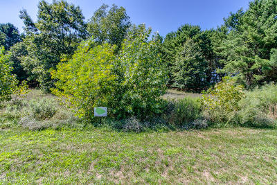 Kent County Residential Lots & Land For Sale: 6195 Gaelic Court NE #17