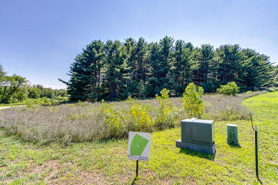 Kent County Residential Lots & Land For Sale: 6217 Gaelic Court NE #16
